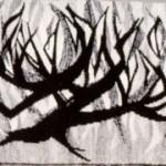 """Lecturn Fall:  """"Burning Bush""""  1963"""